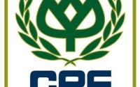 ฝึกงาน CPF