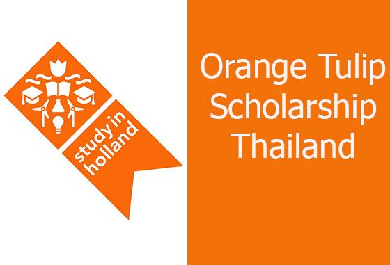 ทุนการศึกษา Orange Tulip