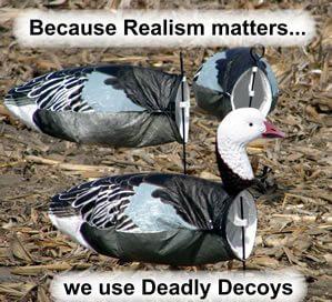 deadlys