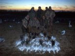 A nice day hunting snow geese.