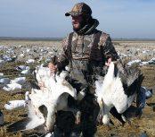 Spring Snow Goose Hunts 2014_017
