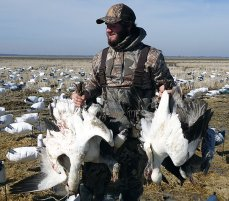 Spring Snow Goose Hunts 2014_017