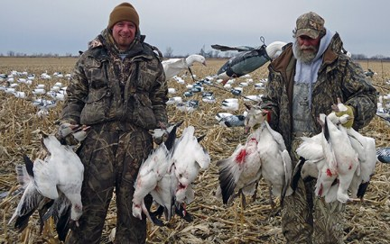 Spring Snow Goose Hunts 2014_019
