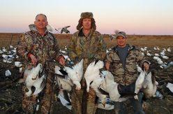 Spring Snow Goose Hunts 2014_024