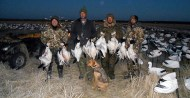 Spring Snow Goose Hunts 2014_041
