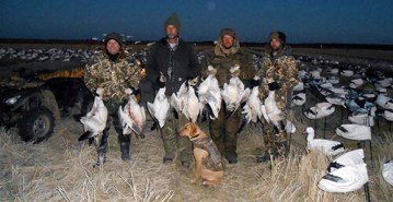 Spring Snow Goose Hunts 2014_041