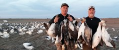 Spring Snow Goose Hunts 2014_098