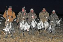 Good snow goose hunt.