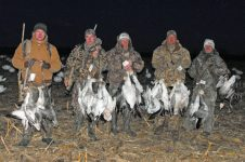 Good snow goose hunt.