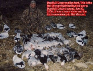 Here is the first time anybody had hunted snow geese with Deadly Decoys™. It was a warmer winter and there were several thousand snows in Mound City already on the opening day of the conservation order January 30, 2006. We shot 35 snow geese that day and the decoy proved then as they have every day in the field since that they are very effective.