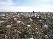 spring-snow-goose-hunt-2013-114