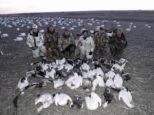 spring-snow-goose-hunt-2013-16