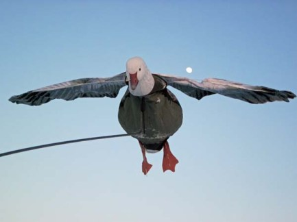 Flyer decoys are one of the keys to our success.