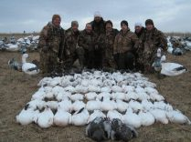 If you have seen our Snow Flurries 2 DVD this is the group on the day they rained 28 birds from one flock. Here they are pictured at the end of the day with the 81 birds they harvested.
