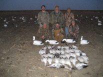 Snow goose season in Missouri