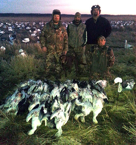 Rice Field Snow Goose Guide