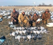 snow goose hunting Arkansas