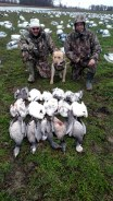 Spring Snow Goose Hunting Www.huntupnorth.com 159
