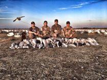Spring Snow Goose Hunting Www.huntupnorth.com 257
