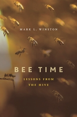Cover: Bee Time in HARDCOVER