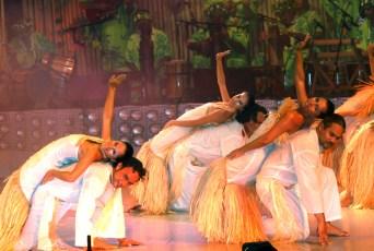 Hei Tahiti ©DR (15)