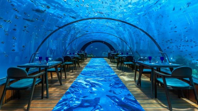 Image result for 5.8 Undersea