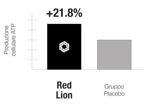 pl-graph-invitro