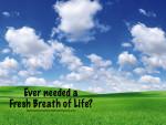 Fresh Breath of Life?