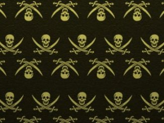 US Calls Out Dozens of Countries on Yearly 'Piracy Watchlist'