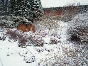 winterize garden