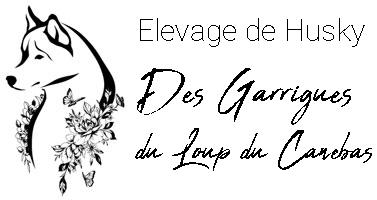 Logo Elevage de Husky des Garrigues