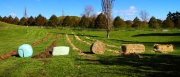 round bale feeder IMG_1320_edit-350x151