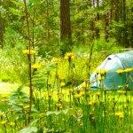 campground-yellow