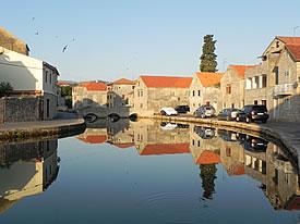 Swifts over Vrboska harbour