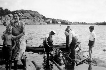 Måke og hval på menyen under andre verdenskrig