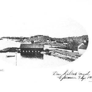 Postk Ormelet sendt 1906 uten opplysninger