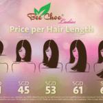 Bee Choo Ladies Hair Treatment Review (SP)