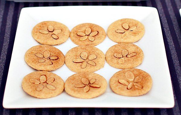 sea shell sugar cookies