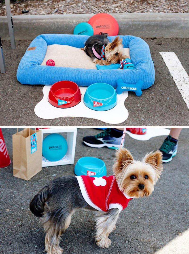 24_dog-friendly-tailgate