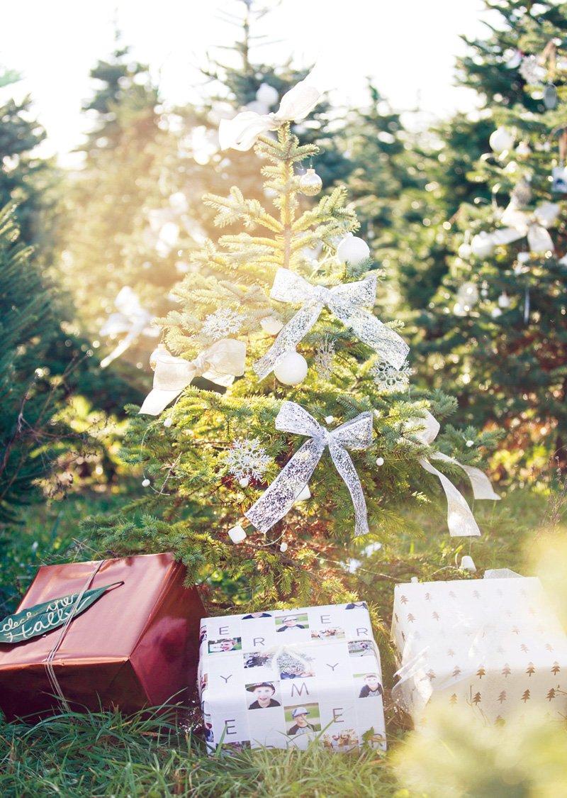 christmas tree farm party