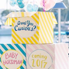 Baby Gender Reveal Party Boxes
