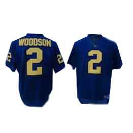 all-pro team sports jerseys,youth baseball jersey cheap,Chicago Cubs Reebok jerseys