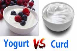 Curd VS Yogurt: Which One Is Healthier