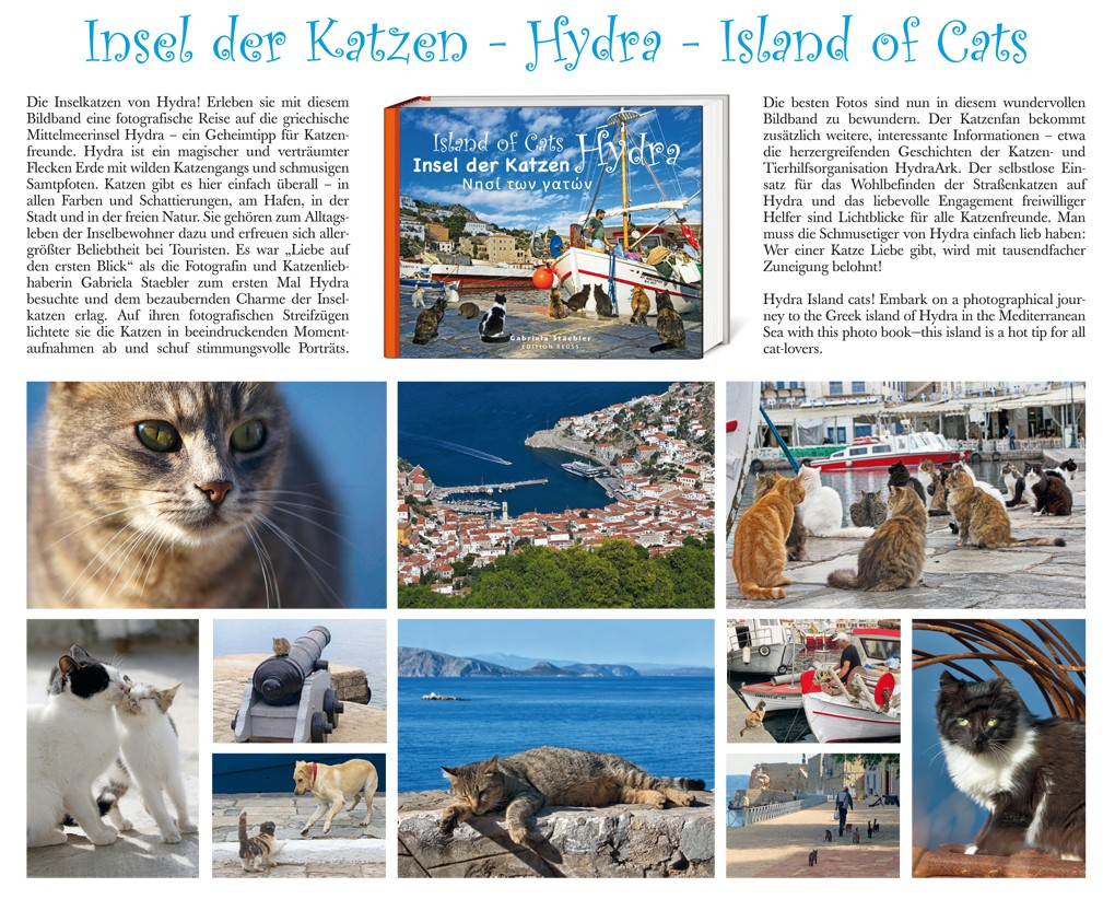 Island-of-Cats-1