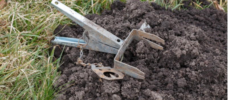 Best mole trap - Looking for the best mole trap, not every trap is right for all situation so we compared each trap to see whether it's worth using and when.