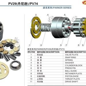 PV29-big