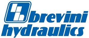Для Brevini Hydraulics