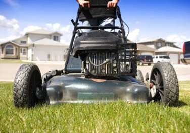 grass tips and eco friendly lawns