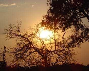 Solar Energy - South Africa