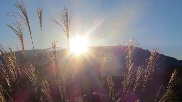 Albuquerque will be investing $25 million in solar energy